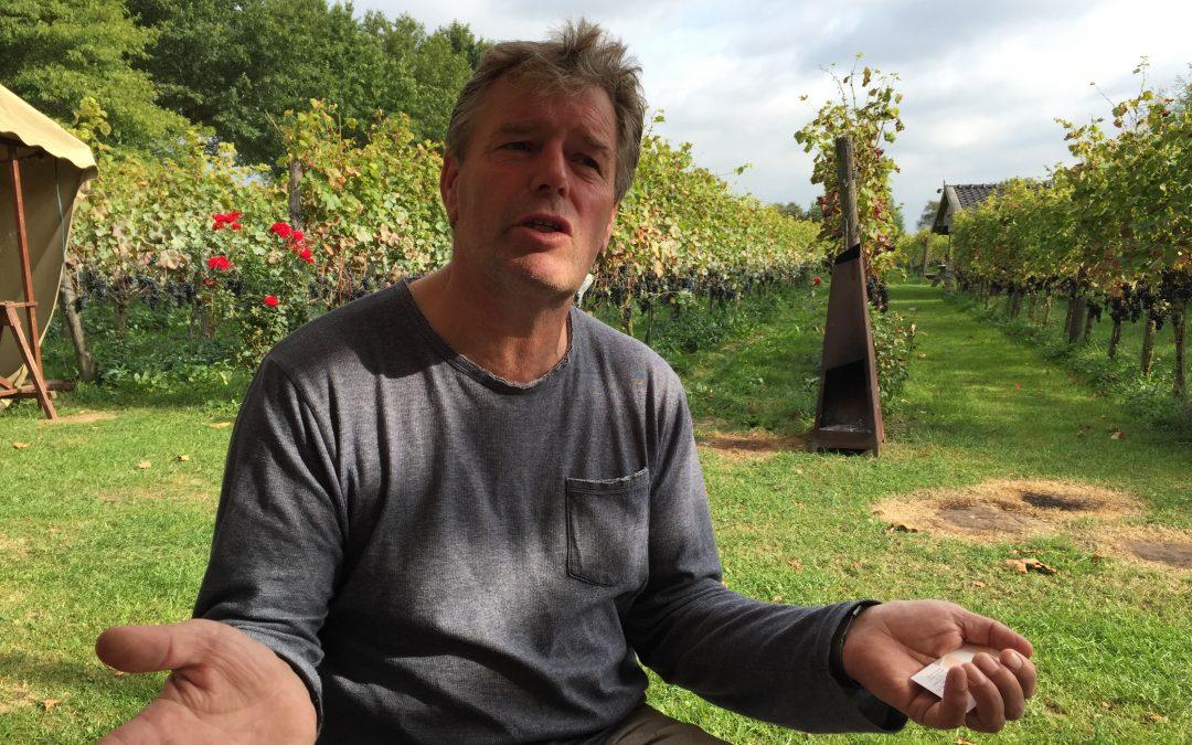 Leon Masselink, wijn van eigen bodem